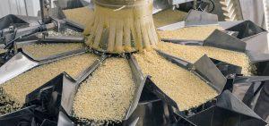 מפעלי מזון - רישיון יצרן