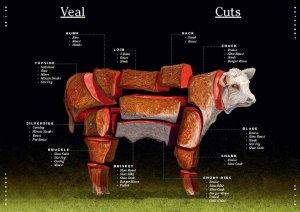 רישיון עסק לאטליז - חלקי הפרה